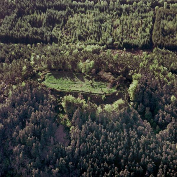 An aerial photograph of an elongated oval bank and clearing within an area of very dense woodland