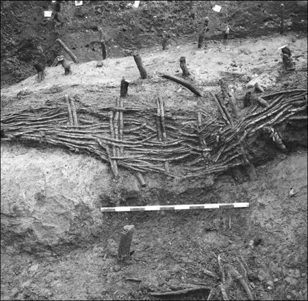 A black and white photograph of an archaeological excavation showing the remains of stakes and a wattle fence