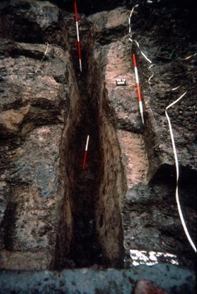 A photograph of an archaeological excavation showing a narrow trench and waterlogged soil