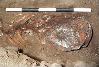 A photograph of an excavated skeleton and striped bonnet