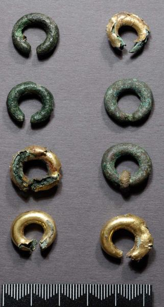 A photograph of 8 degraded penannular rings around 1.5cm to 2cm wide with 4 coated in gold