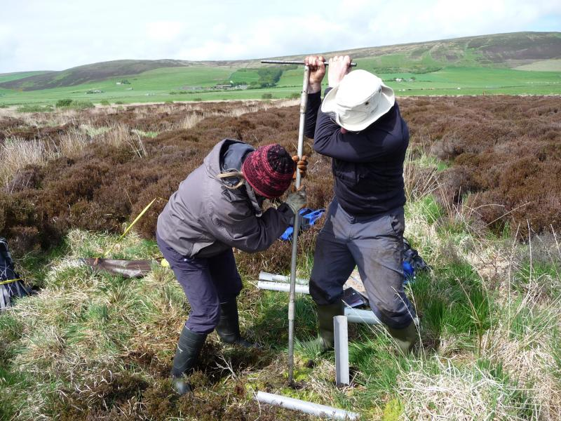A photograph showing two people coring with an auger in a landscape of grass and heather