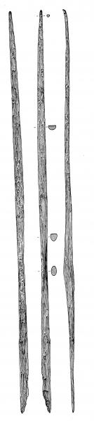 An illustration drawing of the rotton bottom wooden bow with a broken limb