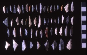 Four rows of nearly 50 microliths averaging two centimeters in length