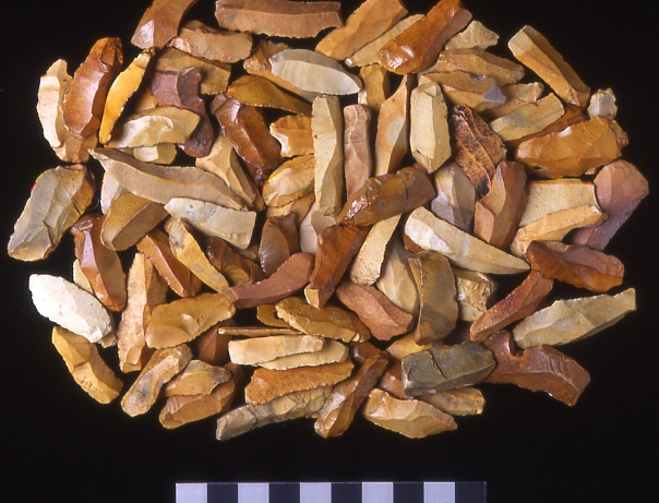 A photograph of a pile of small flint blades with an average length of four centimetres