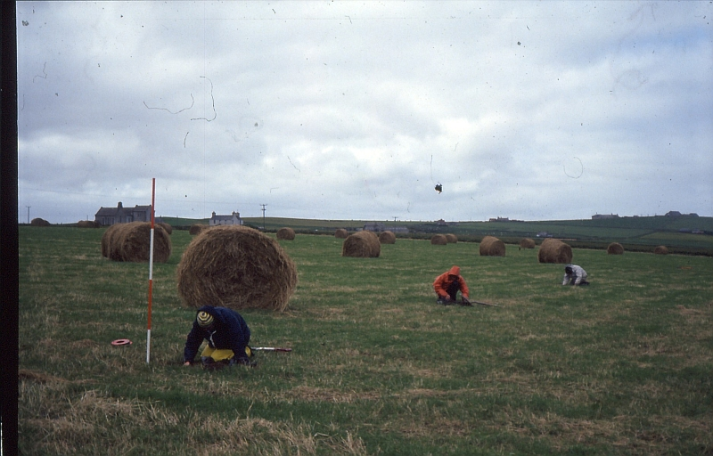 A photograph showing people excavating test pits in a field with round hay bales