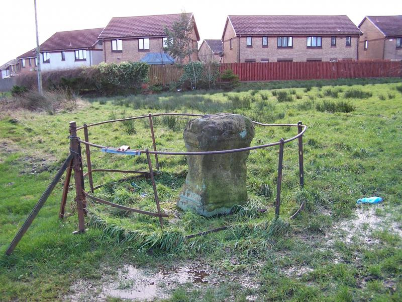A photograph showing a degraded carved stone pillar surrounded by an iron railings in a field with a housing estate in the background