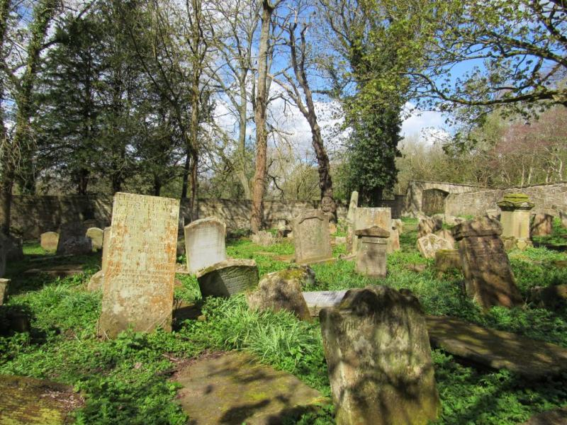 A photo of a historic graveyard on a sunny day, with long grass, trees and casting shadows