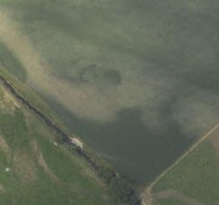 An oblique aerial photograph of a field showing a large arc and crescent shaped crop mark