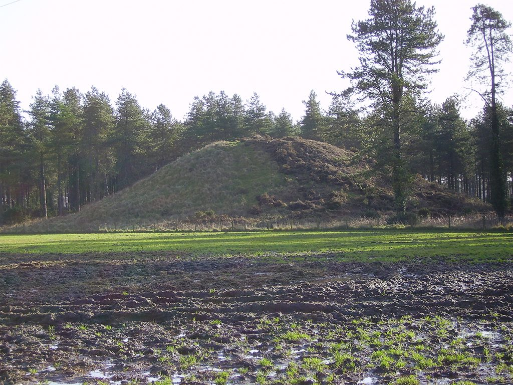A photograph showing a substantial artificial mound in a flat grassy field with woodland in the background