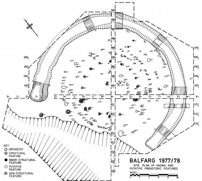 A plan drawing of excavated features and timber circles up to 30 metres in diameter surrounded by a large ditch up to 5 metres wide