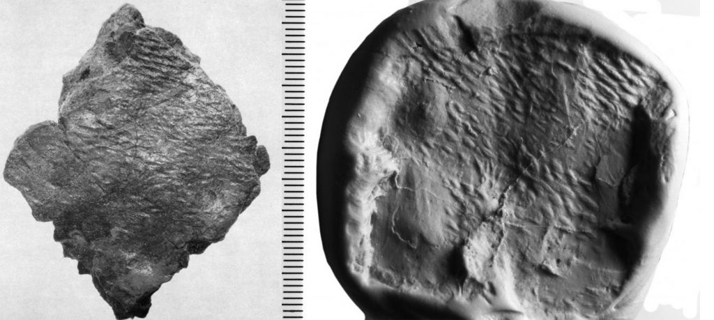 A composite image showing a photograph of a sherd of Impressed Ware from Glenluce with the impression of woven textile and a photograph of a mould made after laser scanning the sherd showing the texture of the woven fibres