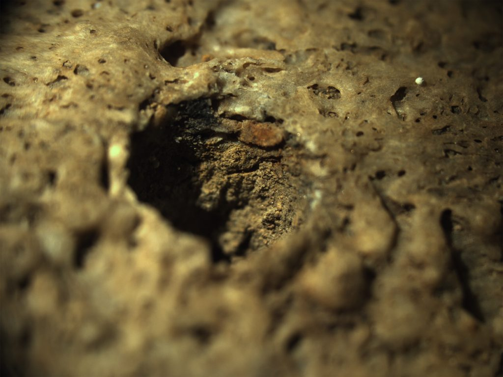 A photograph showing a close up view of drill holes on a fragment of human bone