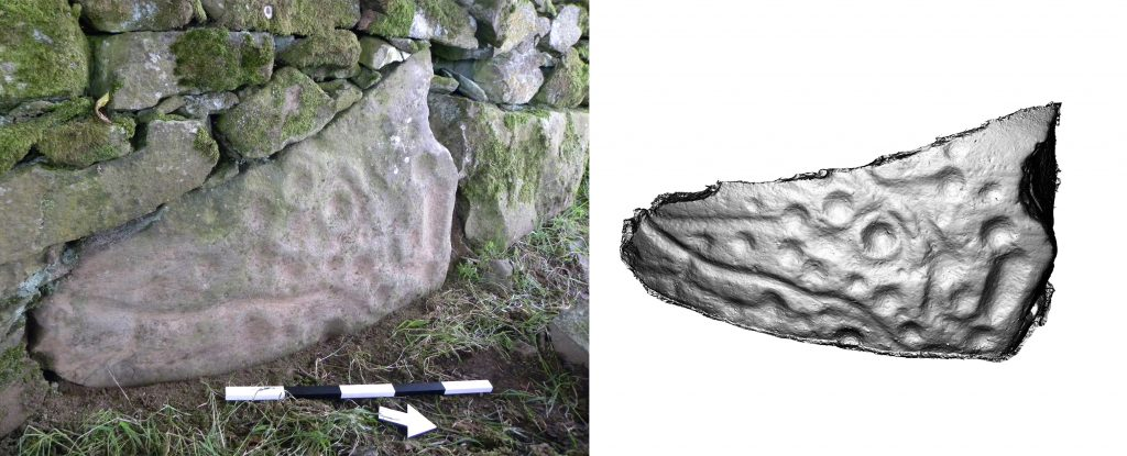 A composite image showing a large stone with cup and ring marks built into a field wall and a 3D model of the motifs
